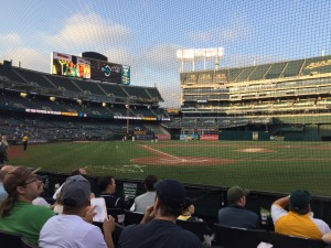 View from behind home plate!